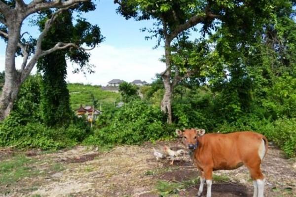 Dijual Tanah Dekat Patung GWK di Jimbaran, Bali – TJJI012