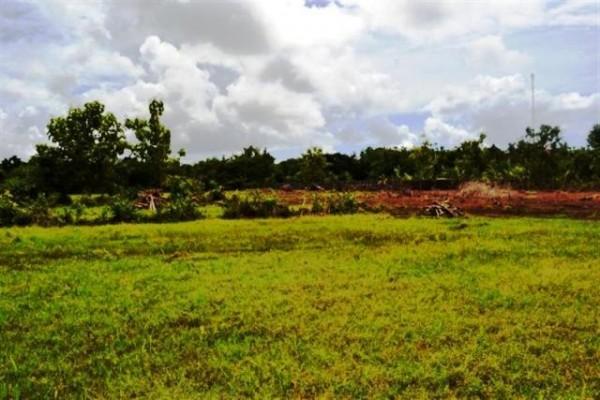 Dijual Tanah Lingkungan Villa di Jimbaran, Bali – TJJI020
