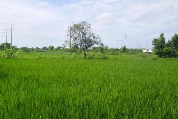 Tanah Dijual Di Sanur Bali – TJSN001