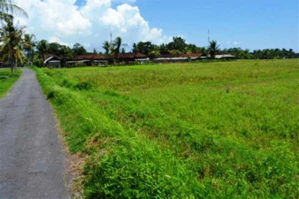 Dijual Tanah Dekat Pantai Kedungu Tabanan, Bali – TJTB002