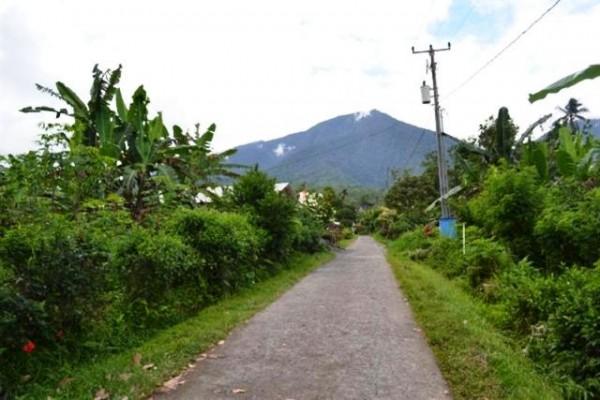 Dijual Tanah View Cantik di Jatiluwih Tabanan, Bali – TJTB005