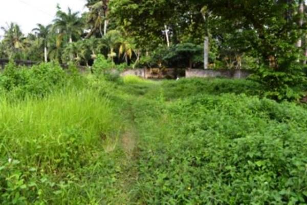 Dijual Tanah 20 are dekat Monkey Forest di Ubud, Bali – TJUB039