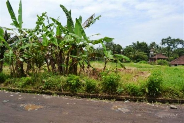Tanah Dijual Di Jantung Kota Ubud, Bali – TJUB051