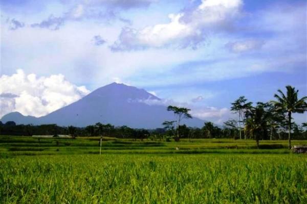 Dijual Tanah dengan view spektakuler di Tegalalang, Ubud, Bali – TJUB082