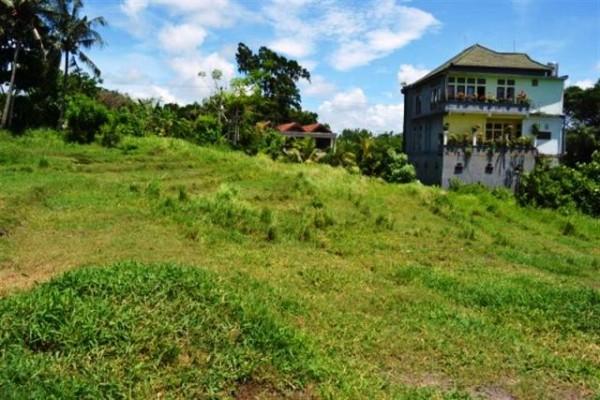 Tanah dijual di Canggu Bali 10 are ideal untuk villa view sawah – TJCG009