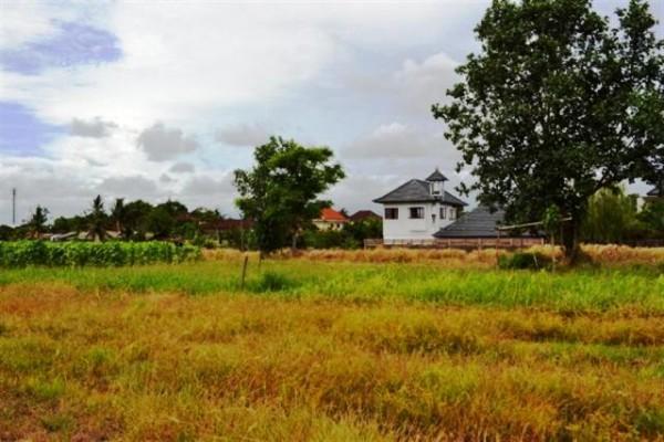 Jual tanah di Canggu Bali cocok untuk villa lokasi Kayu Tulang Canggu – TJCG022