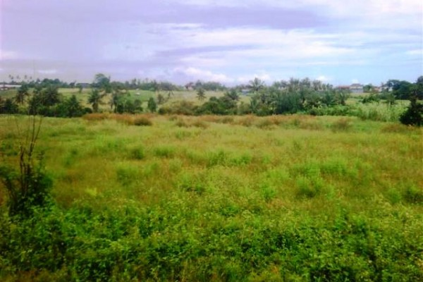 Dijual tanah di canggu pinggir jalan lingkungan villa ( TJCG044B )