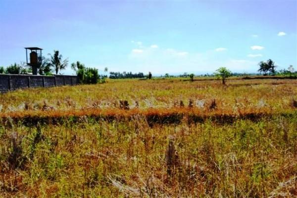 Disewakan tanah di gianyar Lingkungan sawah – T1019