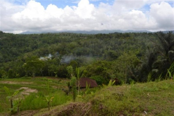 Dijual tanah di Plaga Bali View Bagus – TJBD005