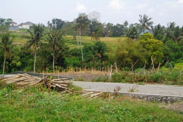 Dijual Tanah di Canggu view sawah terasering – TJCG055