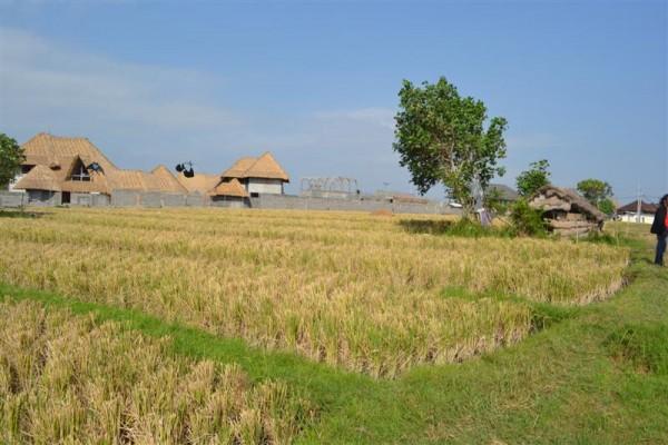 Dijual tanah lokasi deket pantai pererenan Canggu Kuta, Bali – TJCG066
