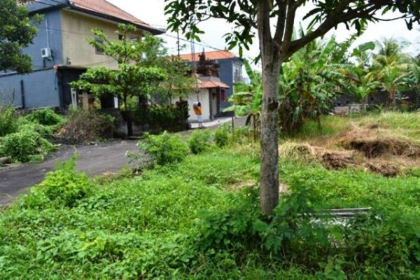 Tanah Dijual di Central Ubud, 10 Are di Jl. Bisma – TJUB051