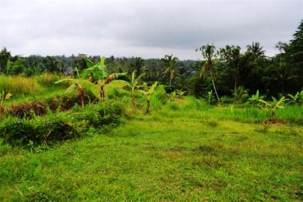 Tanah dijual di Ubud dekat hotel Pandawa – TJUB083