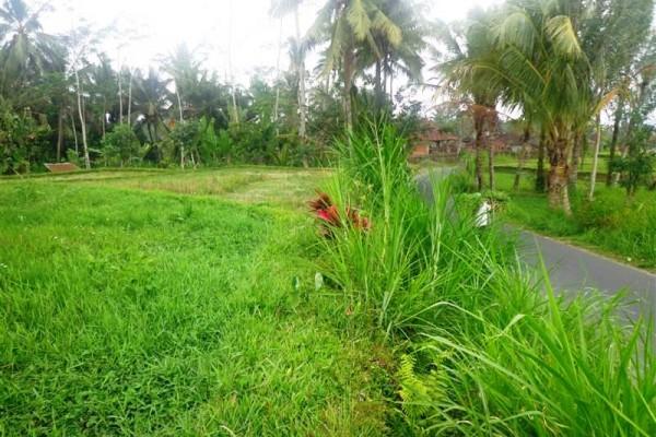 Tanah dijual di Ubud – TJUB109