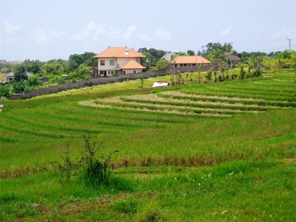 Tanah dijual di canggu Cocok untuk villa – TJCG076