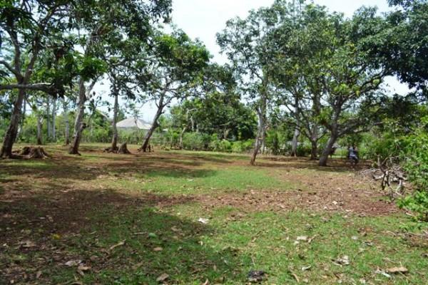 Tanah Dijual di Jimbaran Bali murah, lokasi bagus – T1041