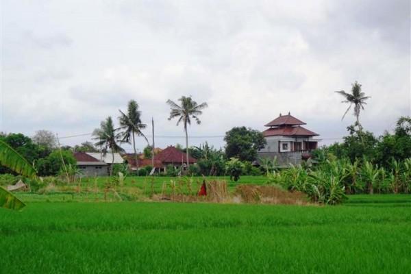 Tanah dijual di Canggu view cantik – TJCG077