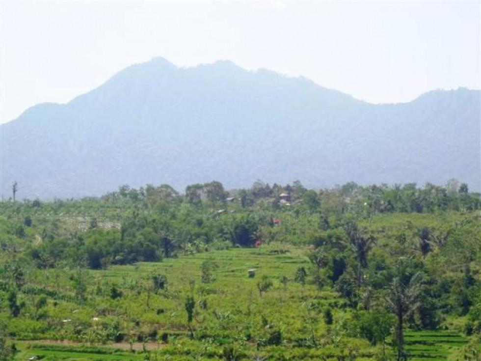 Dijual Tanah di Ubud Payangan 250 are Pemandangan sawah @ Rp. 45 juta / are