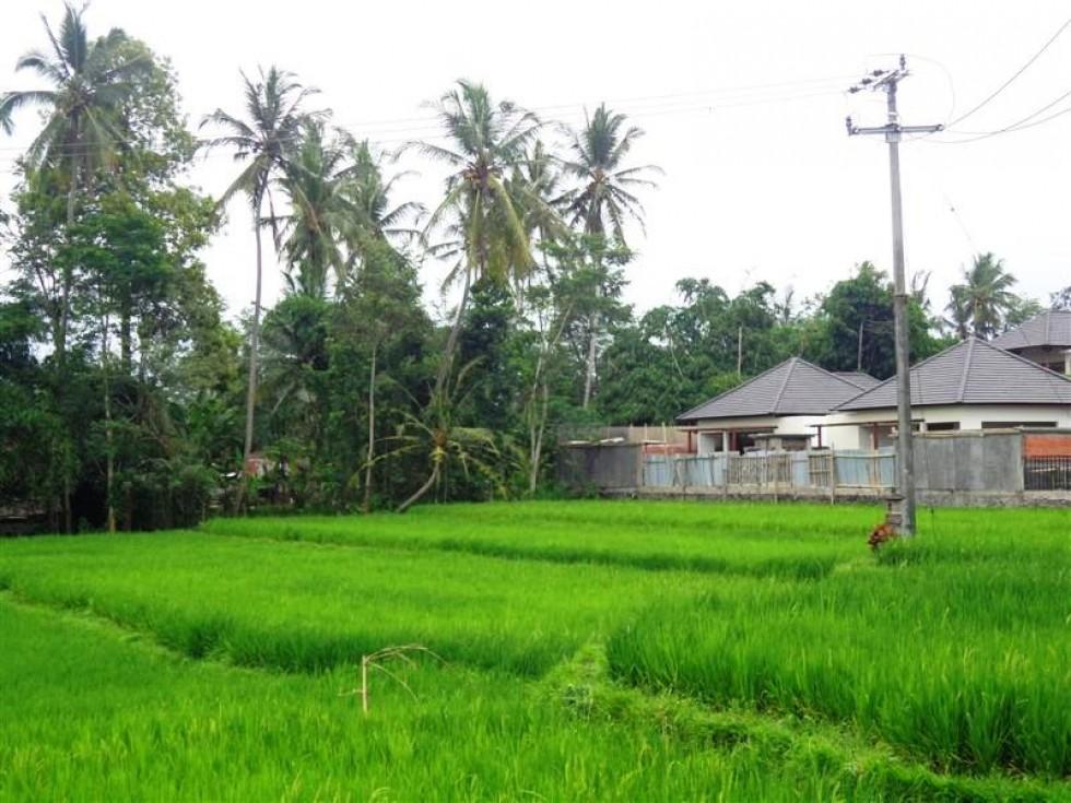 Tanah dijual di Ubud pemandangan sawah di Ubud Tampaksiring – TJUB143