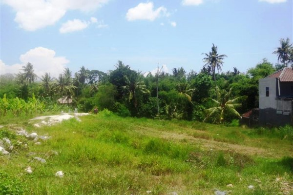 Jual tanah 2 are view sawah di Canggu – TJCG080