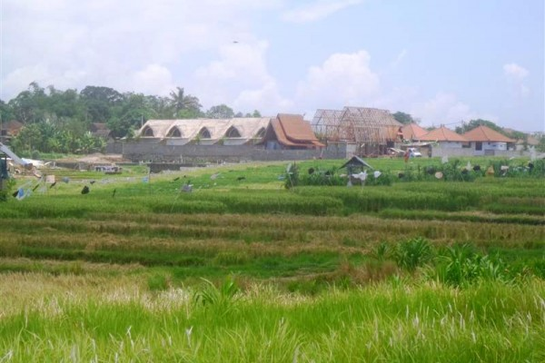 Jual tanah 6 are view sawah di Canggu – TJCG078