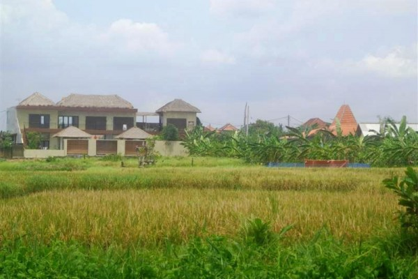 tanah dijual 2 are view sawah – TJCG081