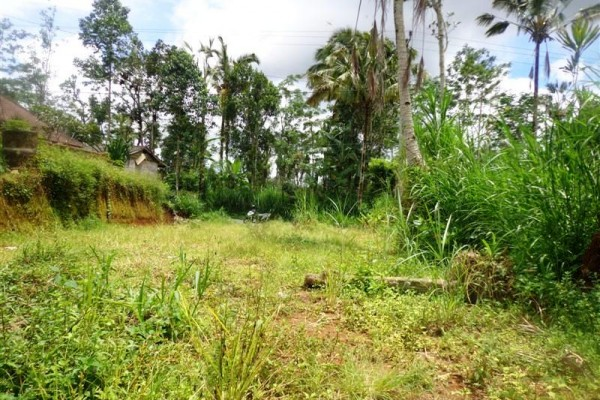 Dijual tanah di Ubud Bali, view fenomenal kebun alami  ( TJUB166 )