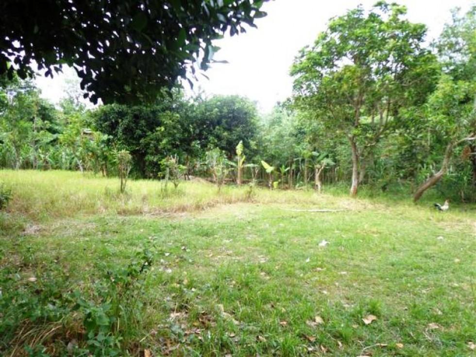 Jual tanah di Jimbaran – TJJI021 Lingkungan Perumahan