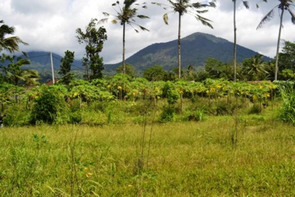 Tanah Dijual di Tabanan Bali view Gunung  – TJTB027