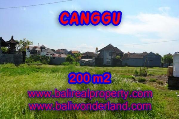 Tanah di Bali dijual view sawah di Canggu Brawa