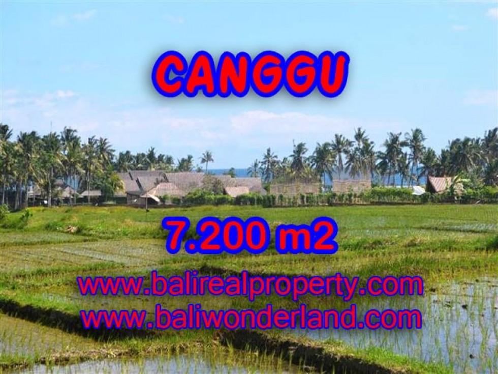 Tanah di Canggu dijual 7.200 m2 view sawah,laut,gunung di Canggu pererenan Bali