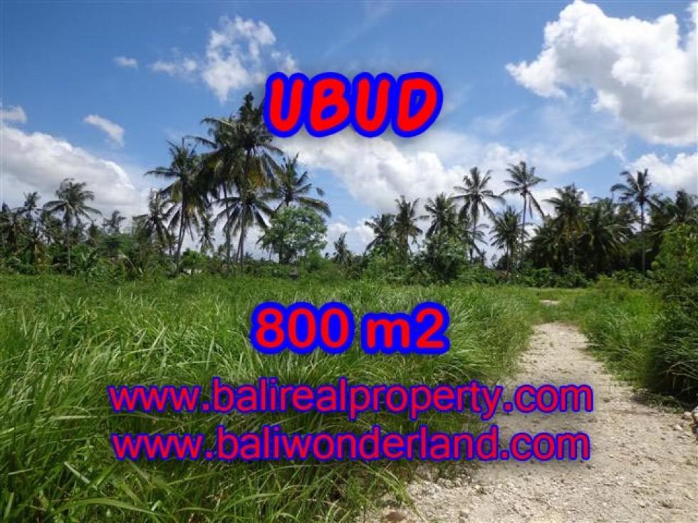 Tanah dijual di Ubud Bali 8 Are di Dekat sentral Ubud