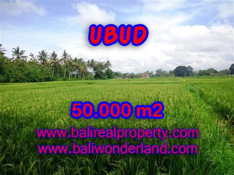 Tanah dijual di Ubud Bali 50.000 m2 di Dekat sentral Ubud