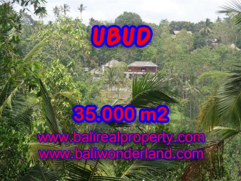 Tanah dijual di Bali View sawah, gunung, sungai dan hutan 35.000 m2 di Ubud Payangan