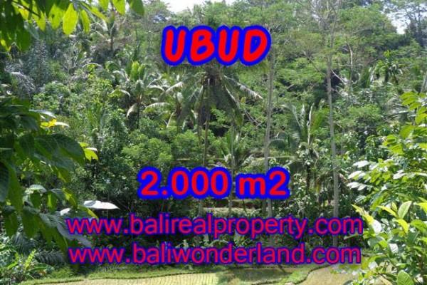 Tanah dijual di Ubud Tegalalang Bali 2.000 TJUB359