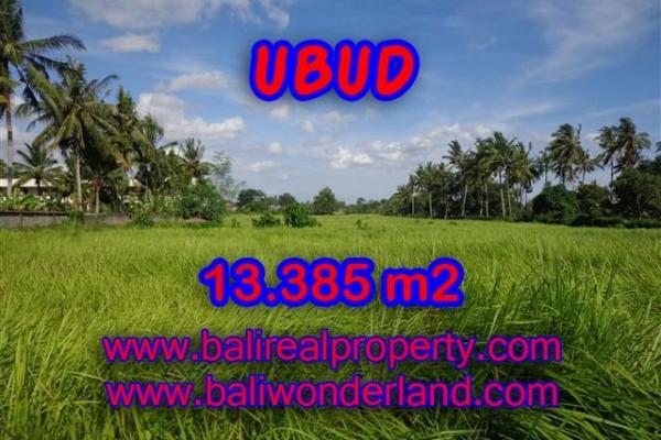 Tanah di Ubud dijual TJUB357 View sawah di dekat Sentral Ubud
