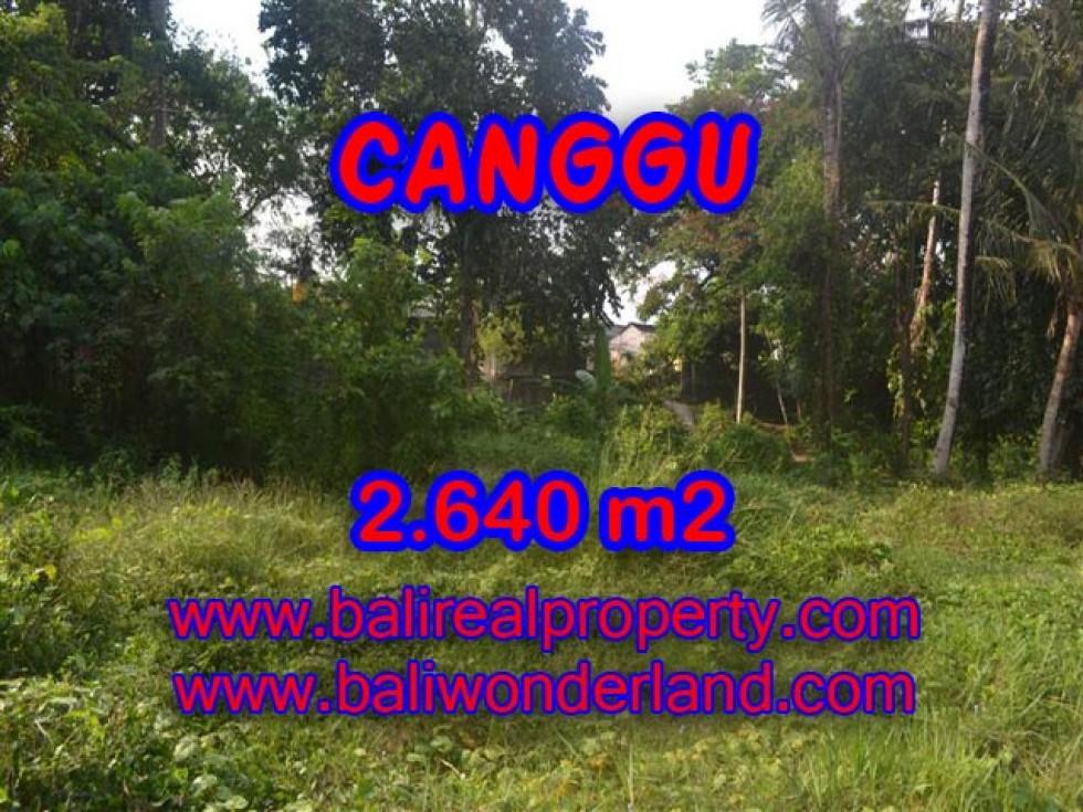 Tanah di Canggu dijual View sawah di Brawa Bali