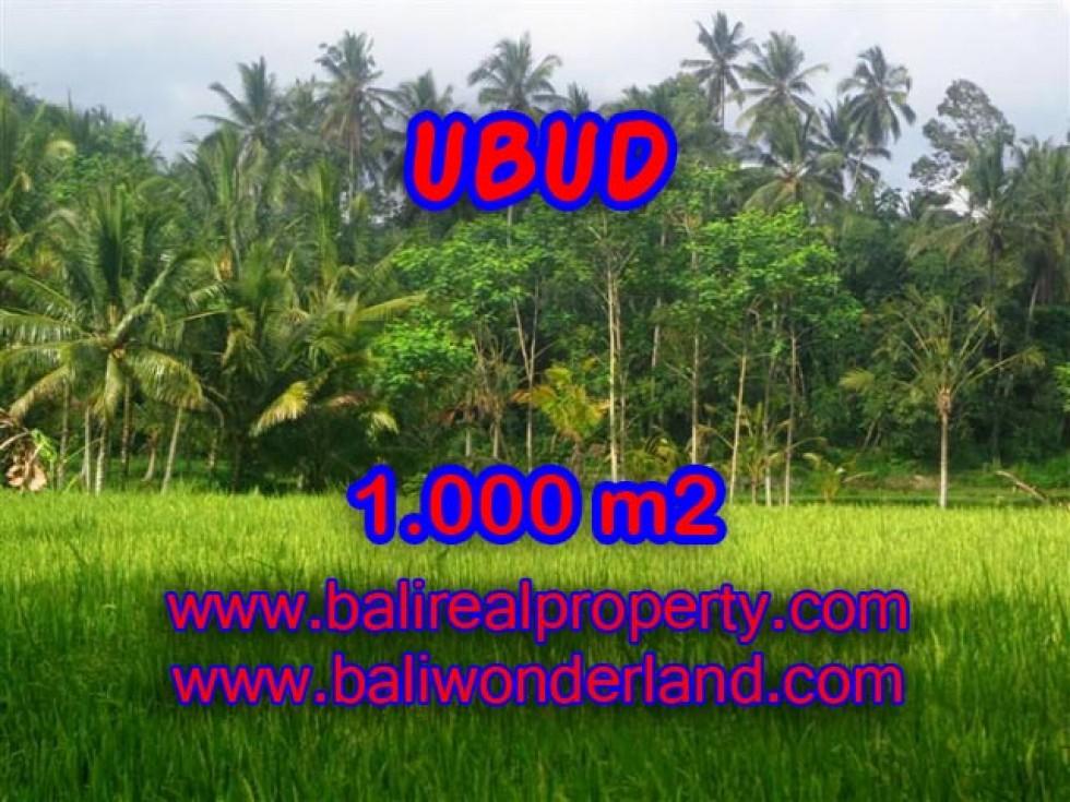 Tanah dijual di Ubud view sawah 1.000 m2 di Ubud Payangan
