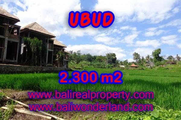 Jual tanah di Ubud 23 Are view sawah dan sungai di Dekat Ubud Center