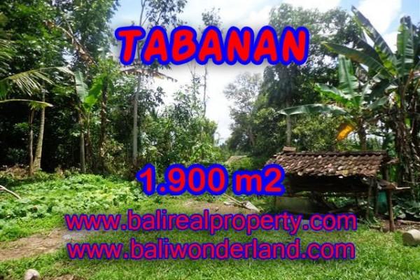 TANAH DI BALI, MURAH DI TABANAN DIJUAL TJTB091 – INVESTASI PROPERTY DI BALI