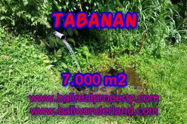 DI JUAL TANAH DI TABANAN BALI TJTB089 – PELUANG INVESTASI PROPERTY DI BALI