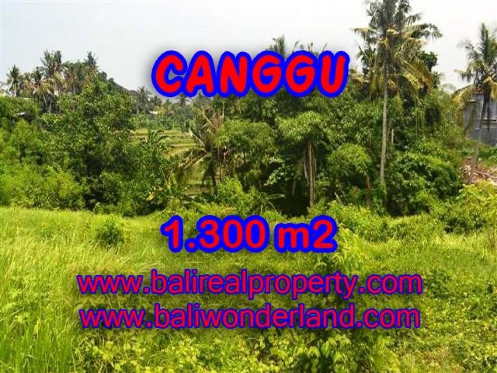 JUAL TANAH DI CANGGU BALI TJCG136
