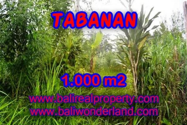 Kesempatan Investasi Properti di Bali – Jual Tanah murah di TABANAN TJTB104