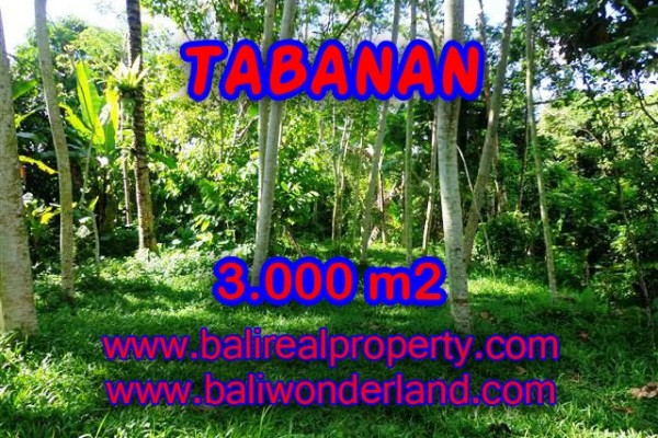 DIJUAL MURAH TANAH DI TABANAN BALI TJTB109 – PELUANG INVESTASI PROPERTY DI BALI