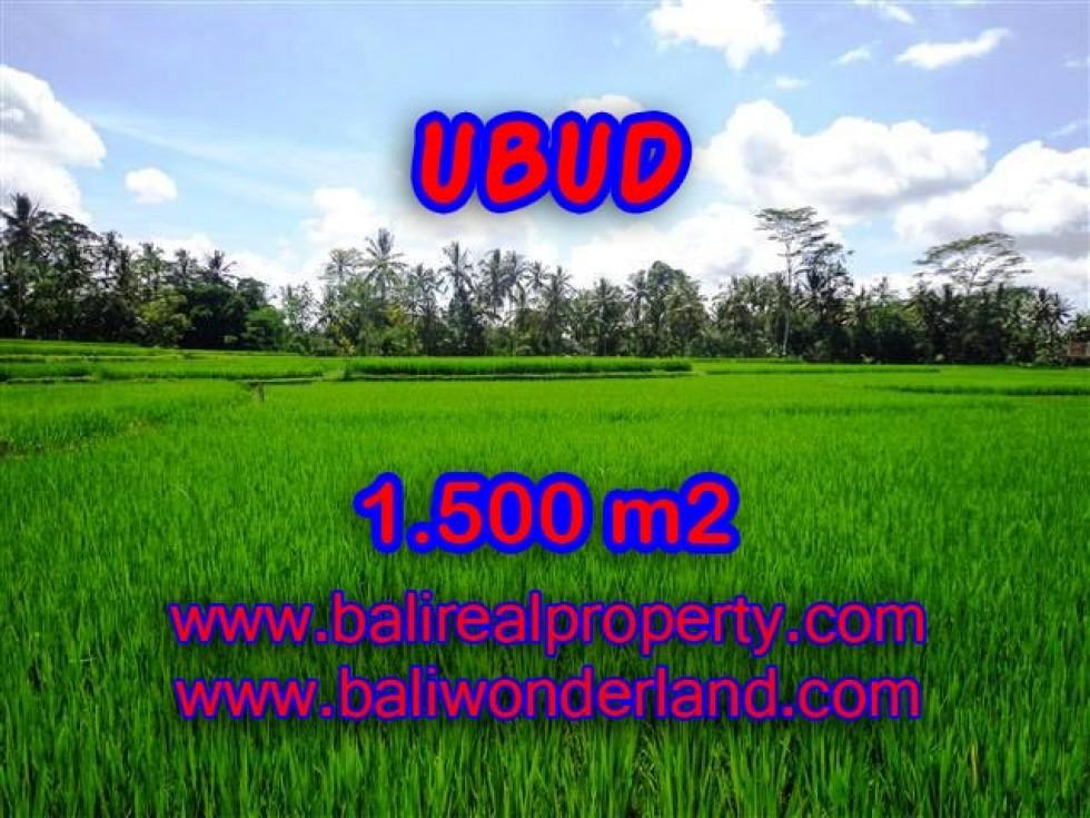DIJUAL TANAH DI UBUD MURAH TJUB383 – INVESTASI PROPERTY DI BALI