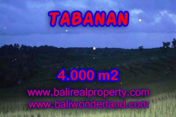 INVESTASI PROPERTI DI BALI – TANAH DIJUAL DI TABANAN BALI TJTB096