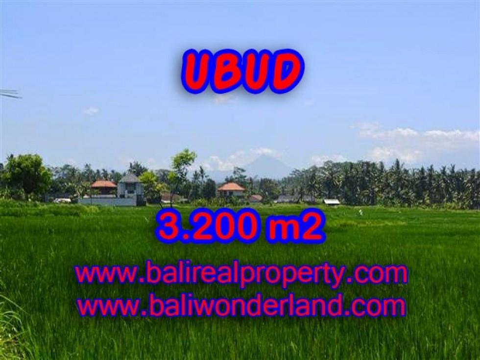 JUAL TANAH DI UBUD BALI TJUB385 – PELUANG INVESTASI PROPERTY DI BALI