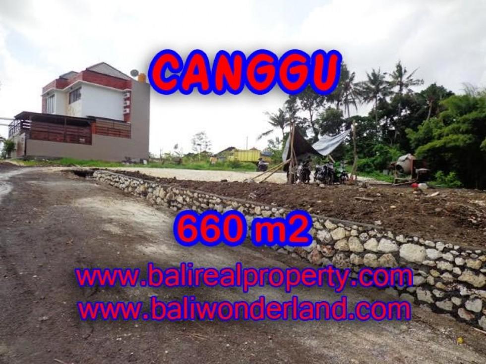 DIJUAL TANAH MURAH DI CANGGU TJCG149 – PELUANG INVESTASI PROPERTY DI BALI