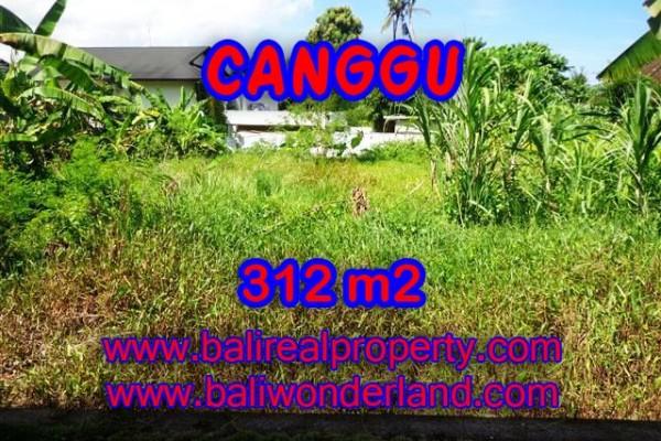 Jual Tanah murah di CANGGU TJCG145 – Kesempatan investasi property di Bali