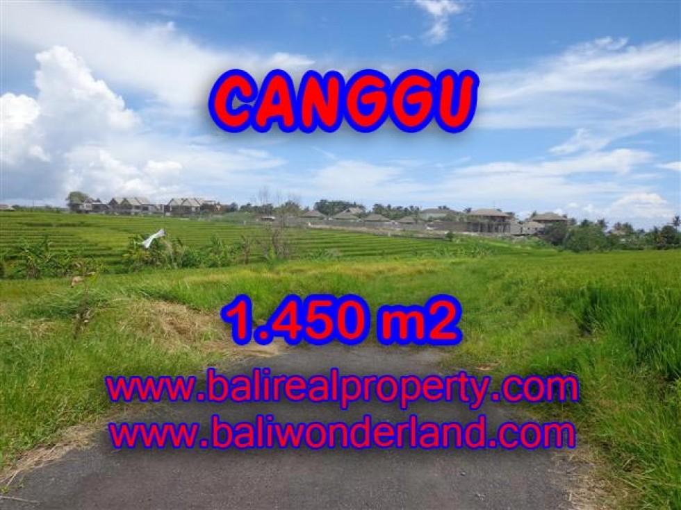 TANAH DIJUAL DI CANGGU BALI TJCG137